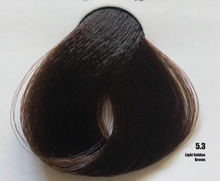 Raywell Tinta Sem Amonia 5.3 Castanho Claro Dourado 100ml