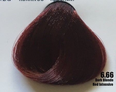 Raywell Tinta Sem Amonia 6.66 Louro Escuro Vermelho Intenso 100ml